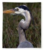 Portrait Of Great Blue Heron Fleece Blanket