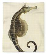 Pot Bellied Seahorse. Hippocampus Abdominalis Fleece Blanket