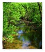 Potamac River In Maryland Fleece Blanket