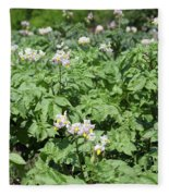 Potato Flower Agriculture Spring Scene Fleece Blanket