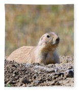 Prairie Dog  9255 Fleece Blanket
