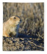 Prairie Dog Watchful Eye Fleece Blanket