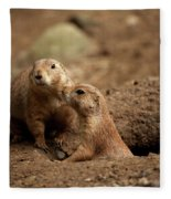 Prairie Dogs Fleece Blanket
