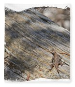 Prairie Lizard _ 1b Fleece Blanket