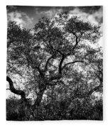 Prairie Oak Fleece Blanket