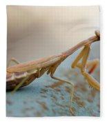 Praying Mantis Close Up Fleece Blanket