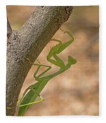 Praying Mantis On The Hunt Fleece Blanket