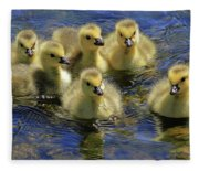 Precious Goslings Fleece Blanket