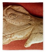 Prehistoric Bison Carving Fleece Blanket