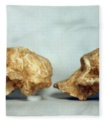 Prehistoric Skulls Fleece Blanket