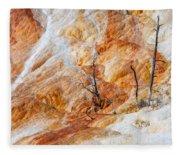 Prehistoric Trees Fleece Blanket