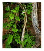 Preston Wall Vine Fleece Blanket