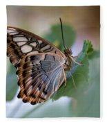 Pretty Butterfly Resting On The Leaf Fleece Blanket