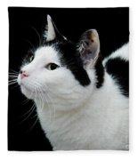 Pretty Kitty Cat 2 Fleece Blanket