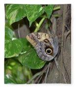 Pretty Morpho Butterfly Resting In A Butterfly Garden  Fleece Blanket