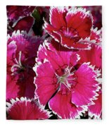 Pretty Pinks Fleece Blanket
