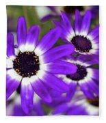Pretty Purple Daisies Fleece Blanket