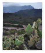 Prickly Pear Cacti Rancho Sierra Vista Satwiwa Mountains Fleece Blanket