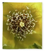 Prickly Pear Cactus Flower Fleece Blanket