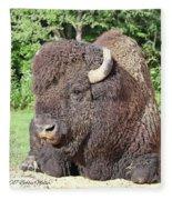 Prim And Proper Bison Fleece Blanket