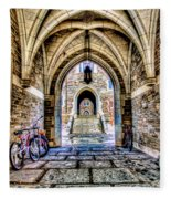 Princeton University Arches And Stairway To Education Fleece Blanket