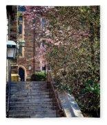 Princeton University Old Stairway Fleece Blanket