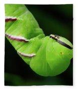 Privet Hawk Moth Caterpillar Fleece Blanket