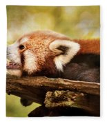 Profile Of A Red Panda Fleece Blanket