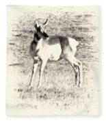 Pronghorn Angelope Fleece Blanket