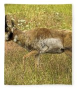 Pronghorn Antelope Fleece Blanket