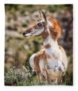 Pronghorn Mother Fleece Blanket