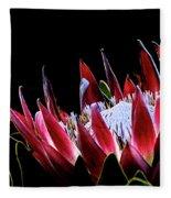Protea 1 Fleece Blanket