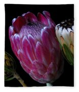 Proteas Fleece Blanket