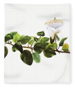 Puapilo Plant Fleece Blanket