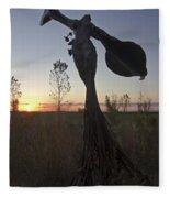 Public Art At Sun Rise Fleece Blanket