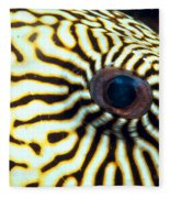 Pufferfish Fleece Blanket