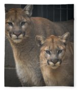 Puma Pair Fleece Blanket