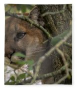 Puma Stalking Fleece Blanket