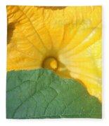 Pumpkin Flower Fleece Blanket