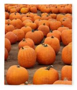 Pumpkins Waiting For Homes Fleece Blanket