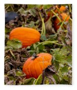 Pumpkins Fleece Blanket