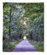 Pumpkinvine Trail In Fall Fleece Blanket