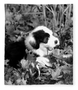 Puppy In The Leaves Fleece Blanket
