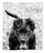 Puppy Play Fleece Blanket