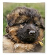 Puppy Portrait II Fleece Blanket