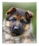Puppy Portrait Fleece Blanket