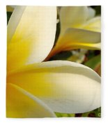 Pure Beauty Plumeria Flowers Fleece Blanket