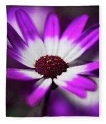 Purple And White Daisy  Fleece Blanket