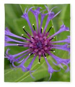 Purple Centaurea Montana Flower Fleece Blanket