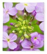 Purple Circle Of Dames Rocket Phlox In Spring Garden Fleece Blanket
